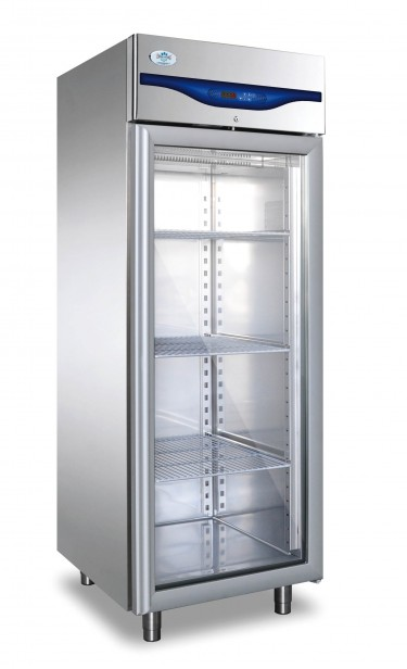 Everlasting Upright Glass Single Door Freezer – PROFESSIONAL 600